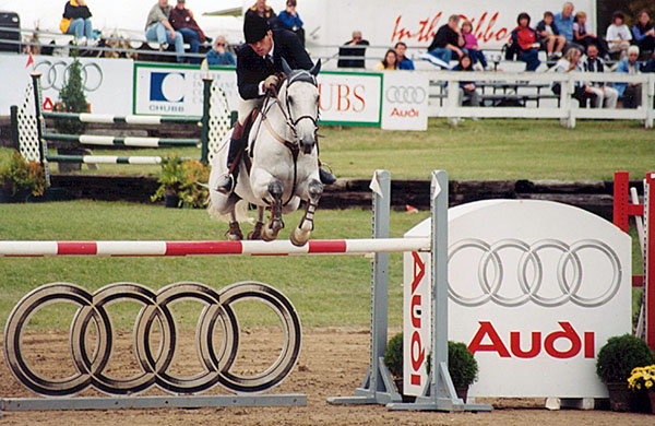 Chris Delia Stables Hunter Jumper Sales Training Equitation Horses for Sale Grand Prix Showjumping Toronto Ontario